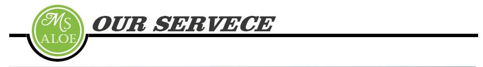 Our Servece