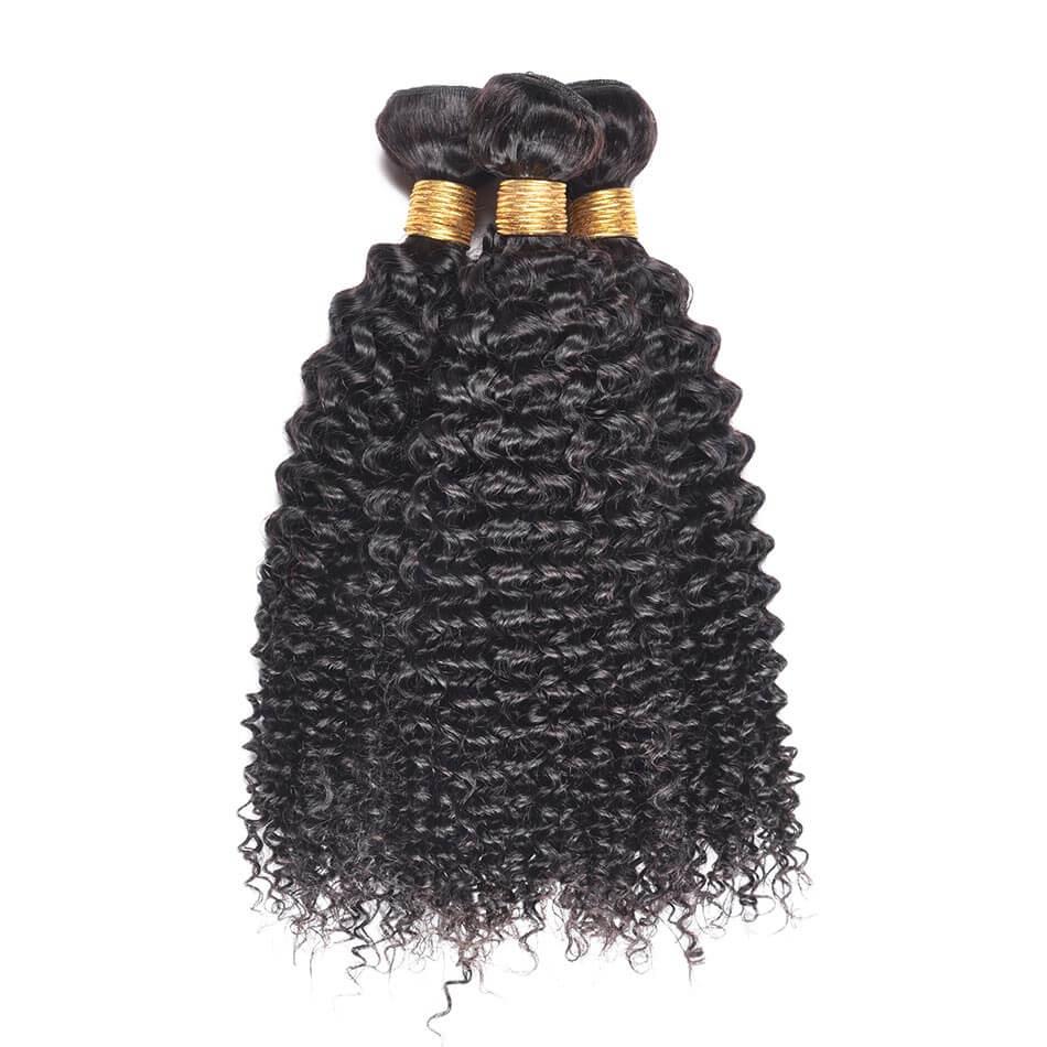 curly wave hair bundles 2